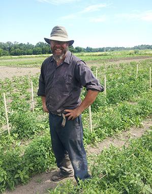 Mike's Garden Harvest