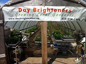 Day Brighteners Farm