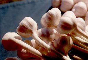 Glengyle Garlic