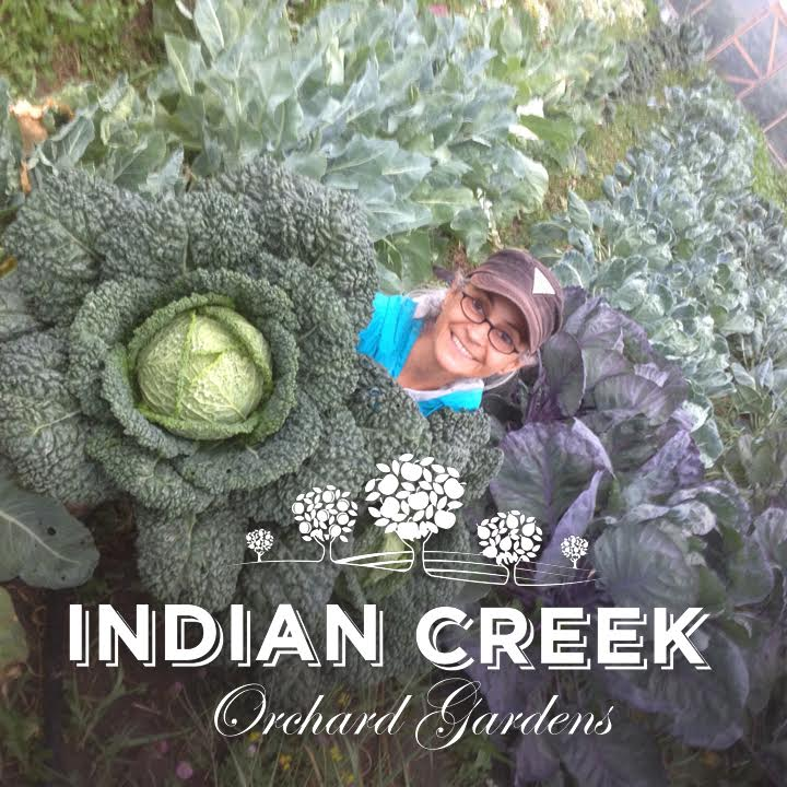 Indian Creek Orchard Gardens
